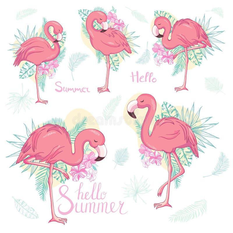 Установите экзотических фламинго изолированных на белой предпосылке r бесплатная иллюстрация