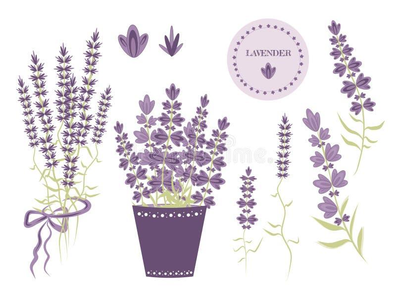 Установите элементов Провансали, цветков лаванды в баке и букетов для дизайна бесплатная иллюстрация