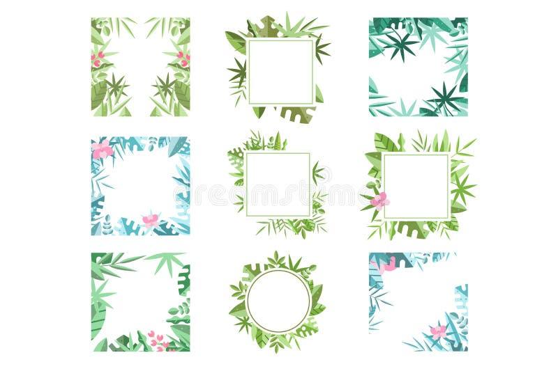 Установите ярких ых-зелен и голубых рамок сделанных из тропических листьев Ботаническая тема Флористические границы Плоский дизай иллюстрация штока