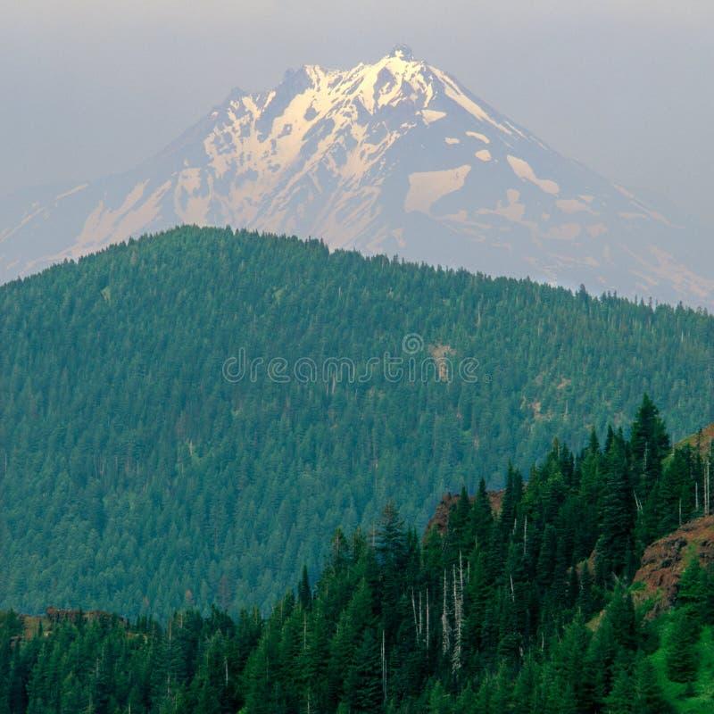 Установите Jefferson затопленный в помохе лесного пожара, от саммита железной горы, национальный лес Willamette, ряд каскада, Оре стоковое изображение rf