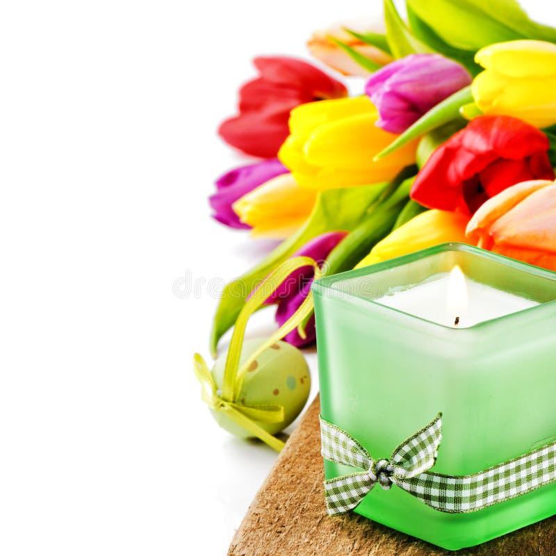 Установка весны с красочными тюльпанами стоковая фотография rf