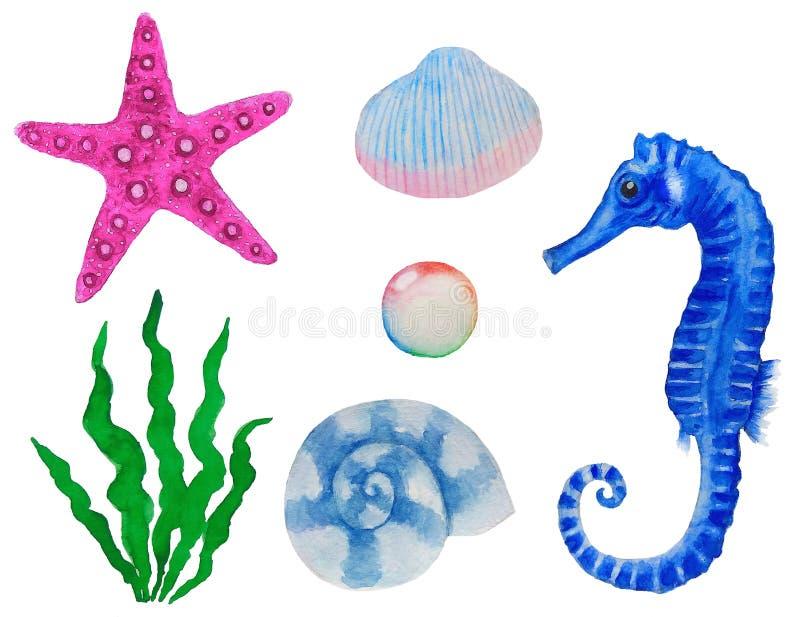 Установленная акварель морских животных и заводов иллюстрация вектора