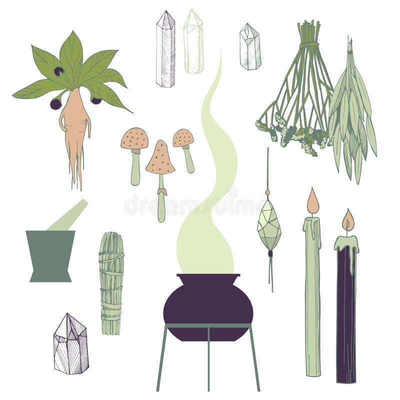 Установленные вещи колдовства Травы, кристаллы также вектор иллюстрации притяжки corel иллюстрация вектора