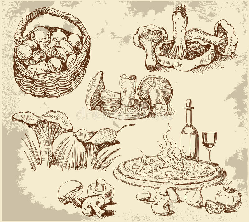 установленные грибы иллюстрация штока