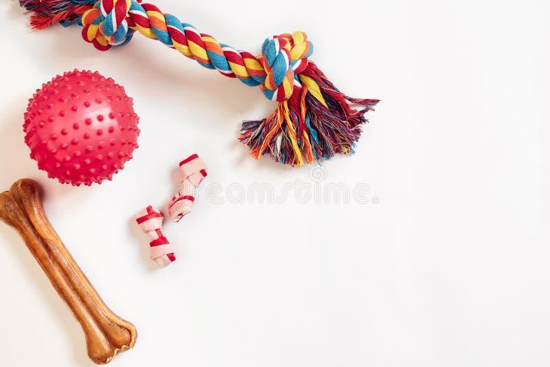 Установленные игрушки собаки: красочная игрушка собаки хлопка и розовый шарик на белой предпосылке стоковая фотография