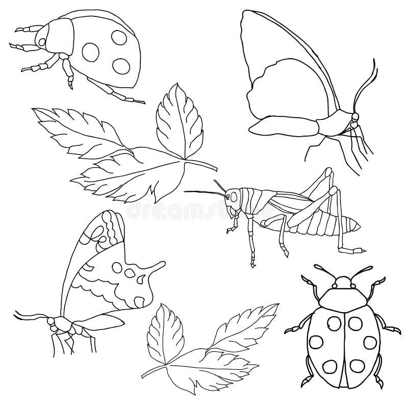 установленные насекомые предпосылки белыми иллюстрация вектора