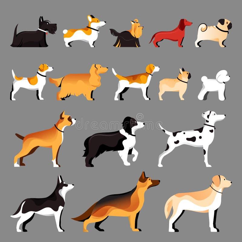 Установленные породы собаки Иллюстрация вектора плоская Pets собрание значков бесплатная иллюстрация