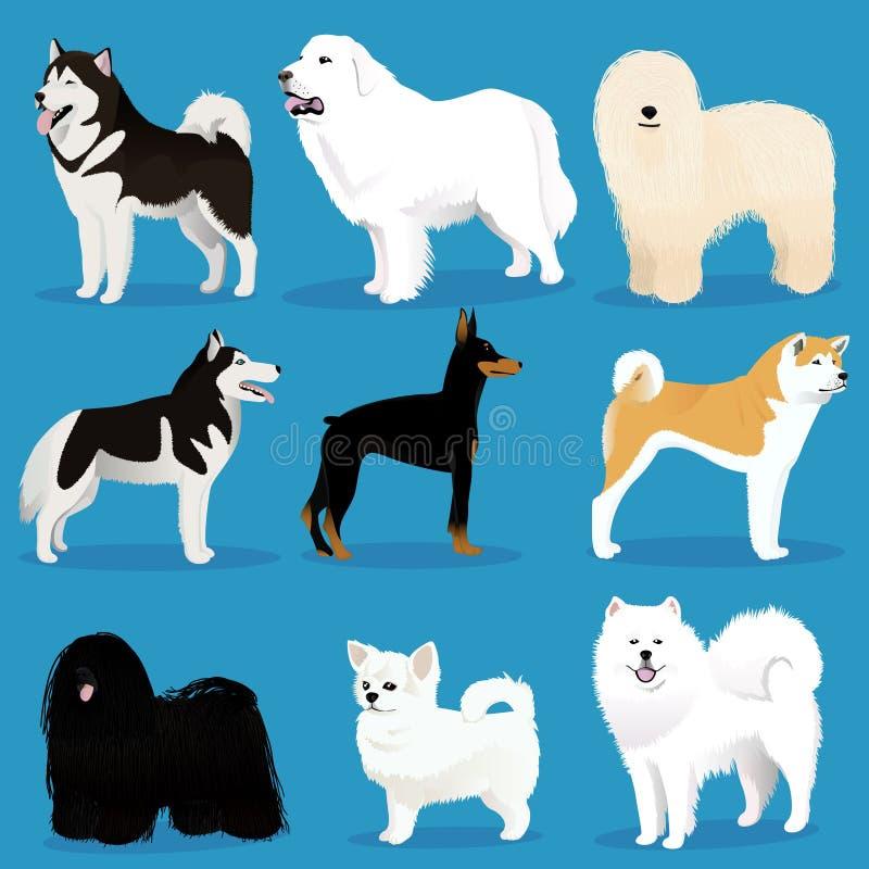 установленные собаки иллюстрация вектора