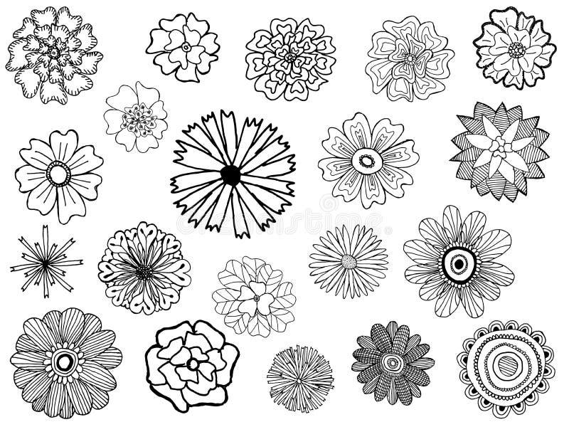установленные цветки бесплатная иллюстрация