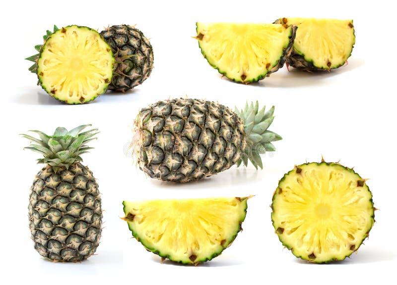 Установленный зеленый ананас изолированный на белой предпосылке стоковое изображение