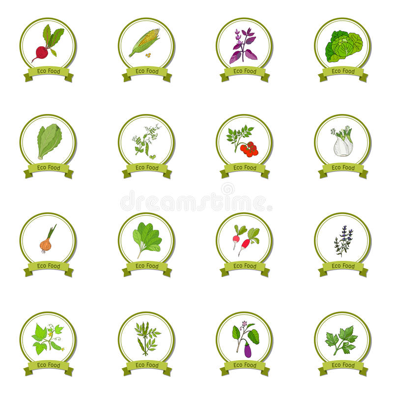 Установленная еда Eco иллюстрация вектора