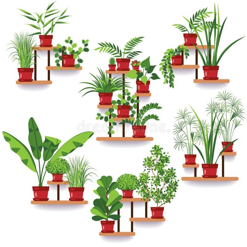 Установленные горшечные растения