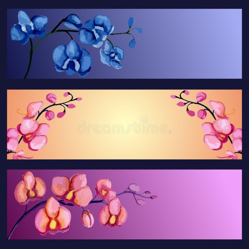Установленные знамена орхидей иллюстрация вектора