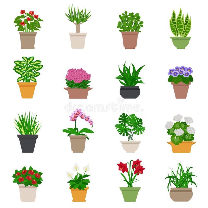Установленные значки комнатного растения бесплатная иллюстрация