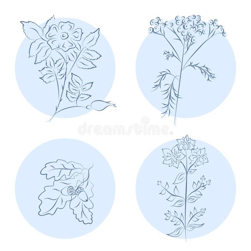 Установленные значки трав бесплатная иллюстрация