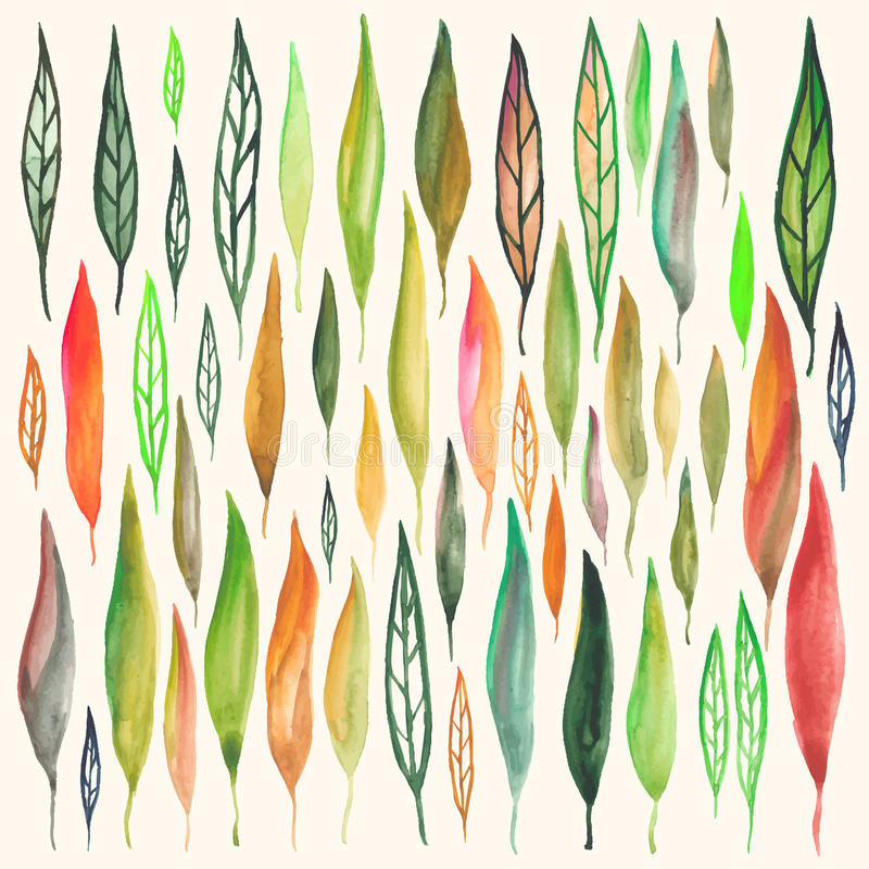 Установленные листья акварели