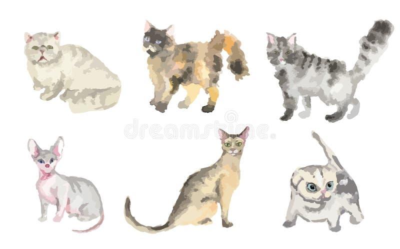 Установленные коты акварели бесплатная иллюстрация