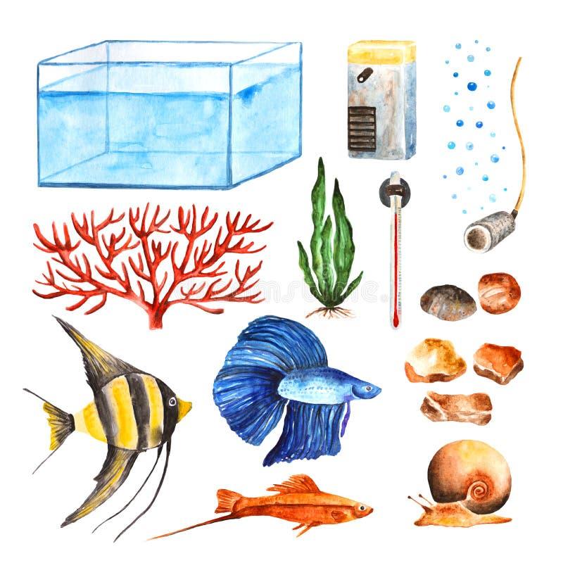 Установленные объекты аквариума акварели иллюстрация штока