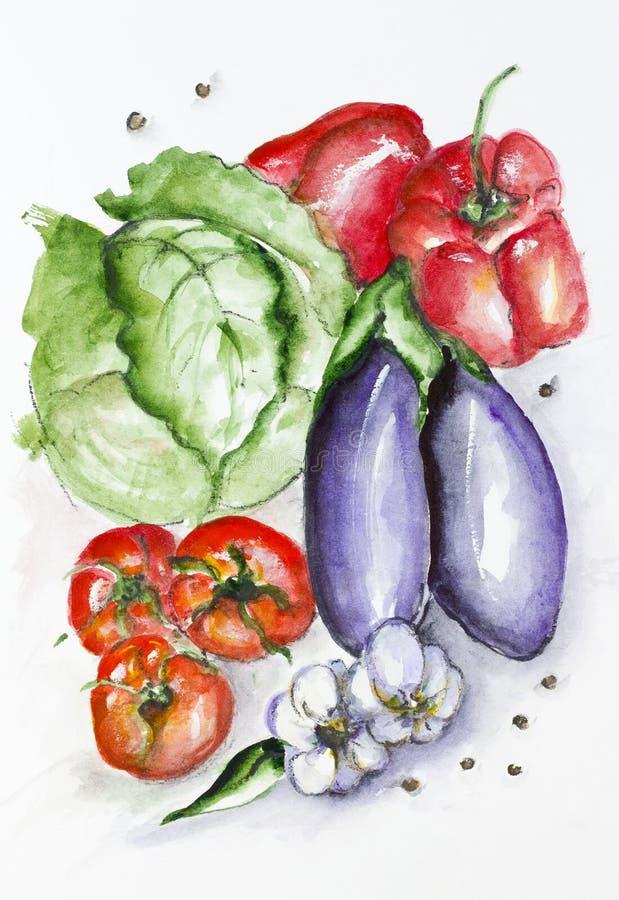 Установленные овощи акварели стоковые фото