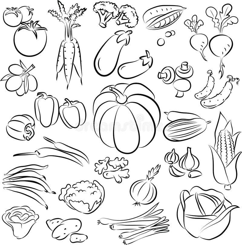 Установленные овощи бесплатная иллюстрация