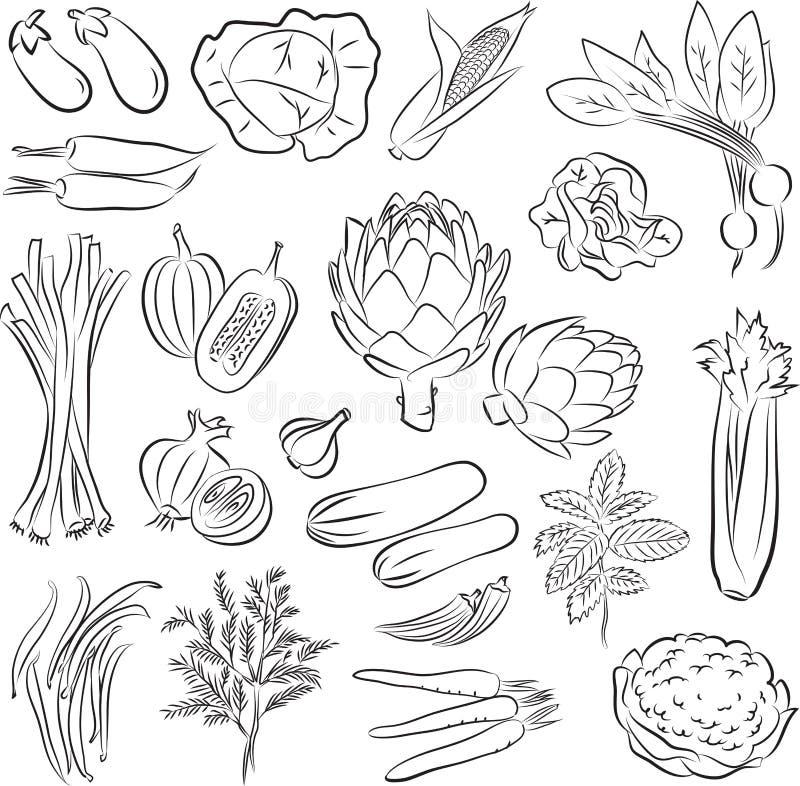 Установленные овощи иллюстрация штока