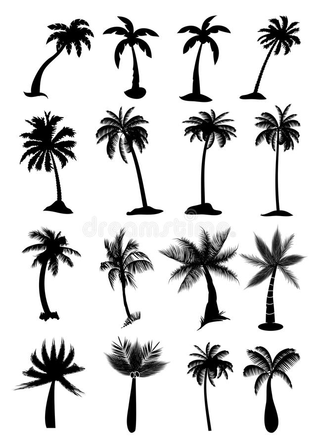 Установленные пальмы иллюстрация штока