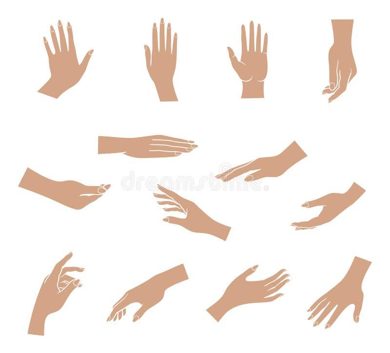Установленные руки иллюстрация вектора
