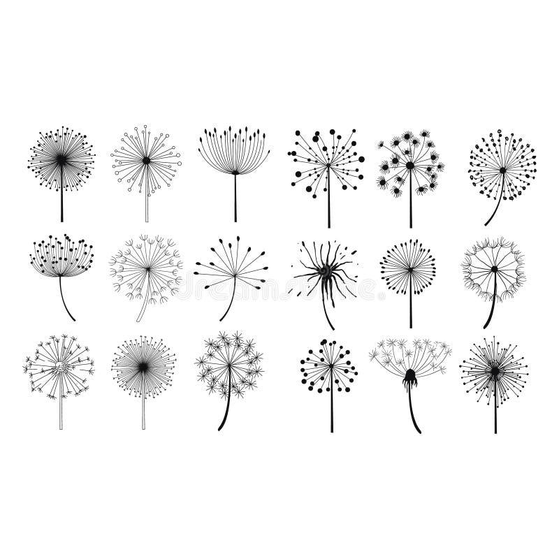 Установленные цветки семян одуванчика пушистые бесплатная иллюстрация
