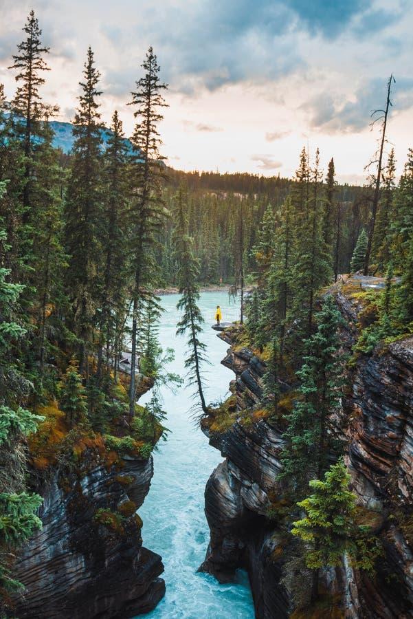 Уступ обозревая реку Athabasca около Athabasca падает стоковые изображения rf