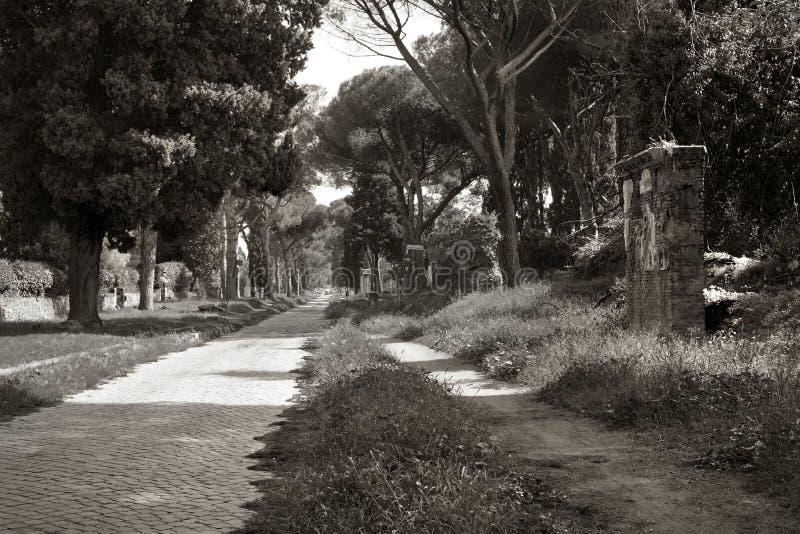 Усыпальницы вдоль старого пути Appianian в Риме стоковые фотографии rf