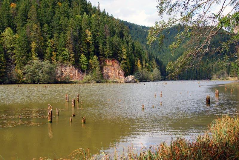 утесистое пика озера ceahlau красное стоковые фотографии rf
