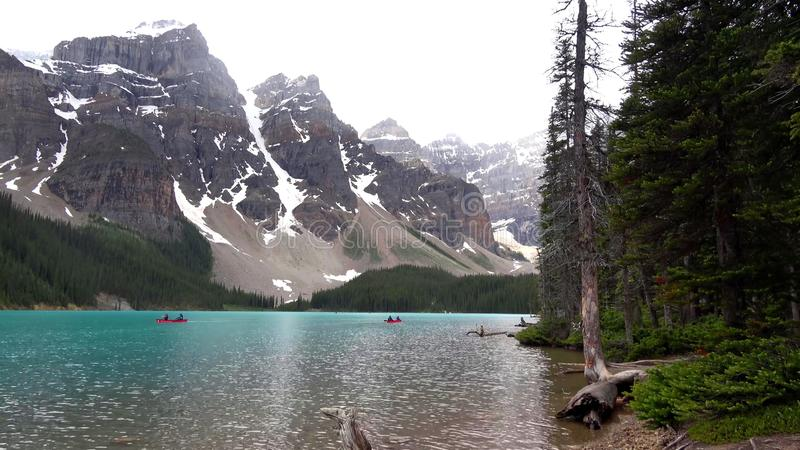 Утесистые горы, национальный парк Banff, Канада стоковые фотографии rf