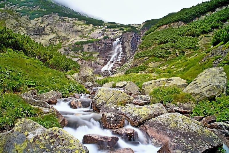 Утесы в воде под водопадом Skok в высоком Tatras Красивая долина Mlynicka стоковая фотография rf