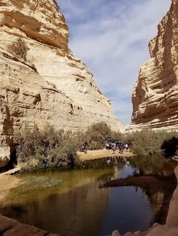 Утесы в пустыне стоковые фото