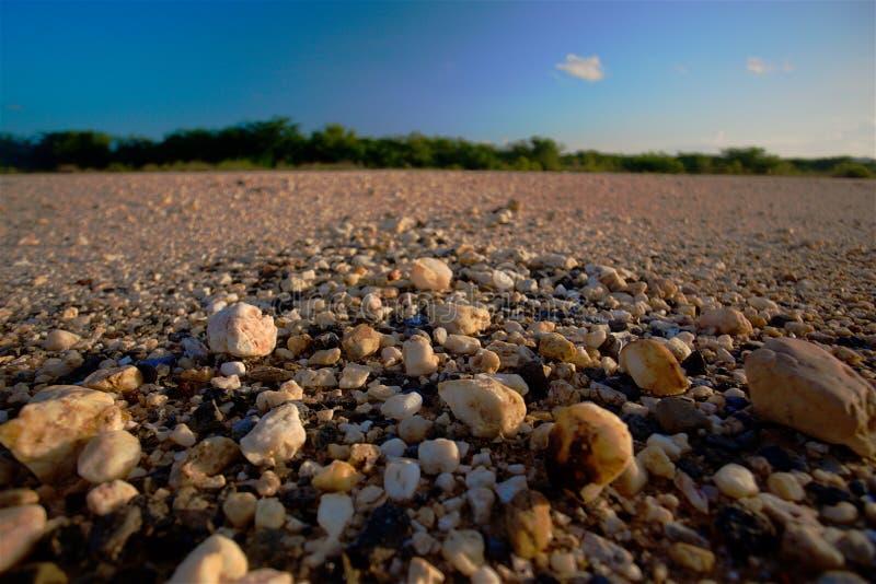 Утесы в пустыне стоковые фотографии rf