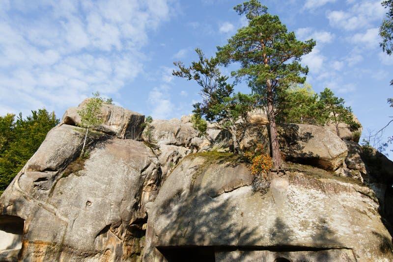 Утесы в Bubnyshche, прикарпатские горы Dovbush, Украина стоковые фотографии rf