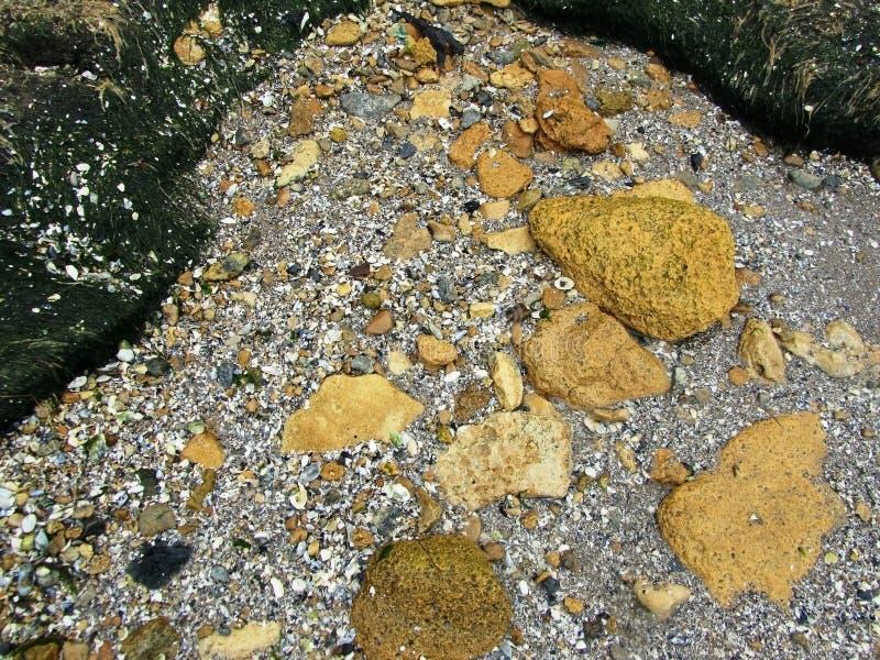 Утесы и камешки на пляже стоковые изображения