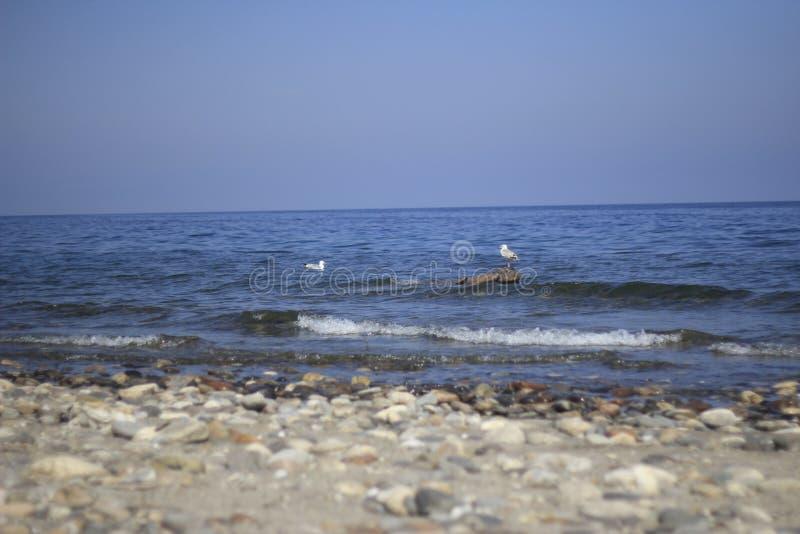 Утесы и лодка стоковая фотография