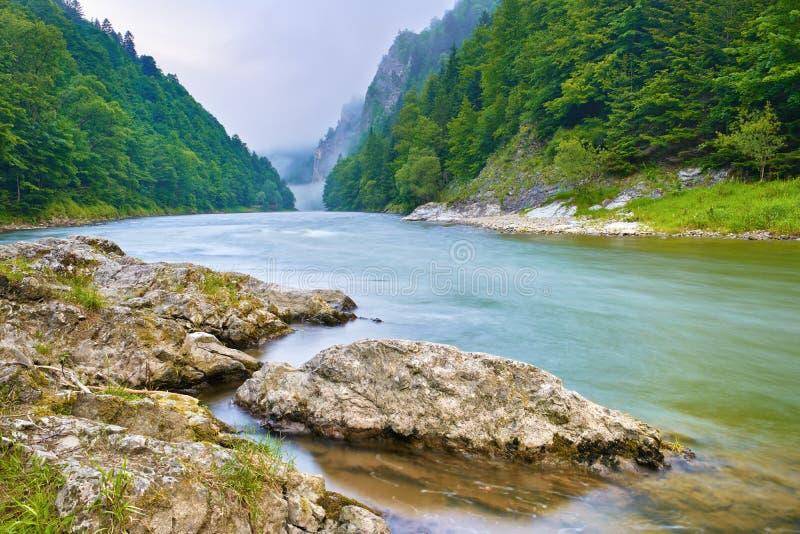Утесы на речном береге в горах. Dunajec r стоковые изображения rf