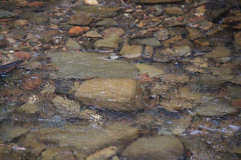 Утесы под быстрой текущей водой стоковое фото rf