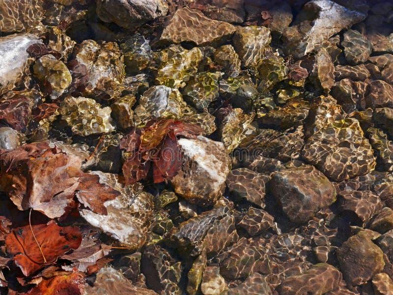 утесы под водой стоковые фотографии rf