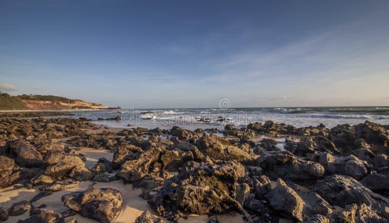 Утесы приставают пипу к берегу, Tibau делают Sul - Риу-Гранди-ду-Норти, Бразилию стоковое изображение rf