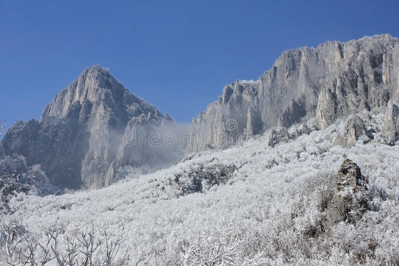 Утесы, снег и деревья стоковая фотография rf