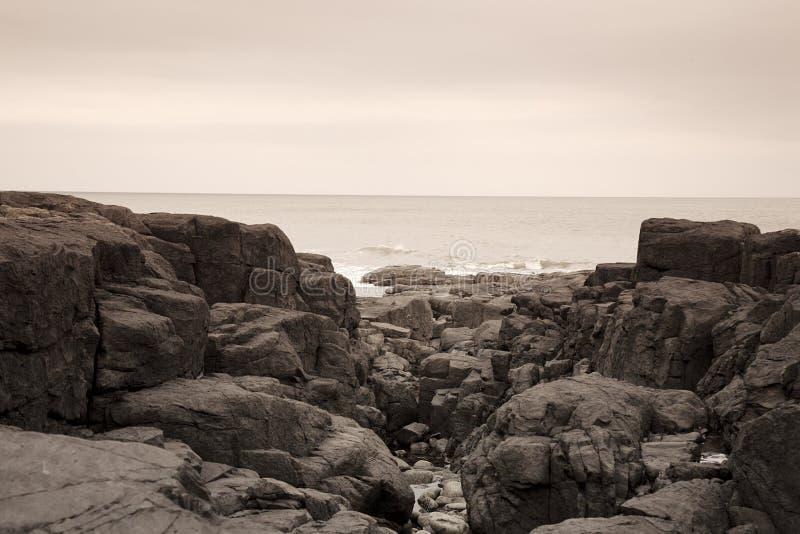 утесы northumberland пляжа стоковые фото