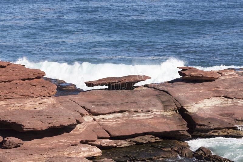 Утес гриба на береговой линии западной Австралии Kalbarri изрезанной стоковое изображение rf