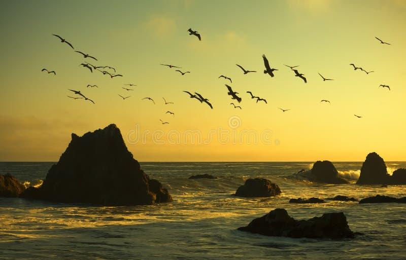 Утес громоздк в пляже Malibu стоковое изображение rf