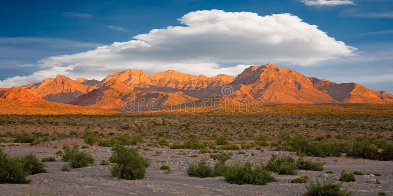 утес красного цвета Невады каньона стоковая фотография rf