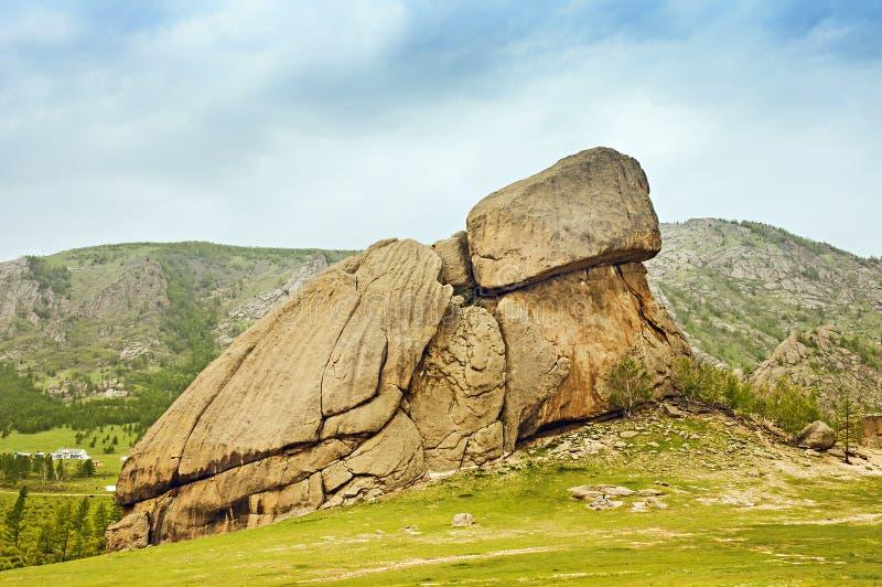 Утес Монголия черепахи стоковые фотографии rf
