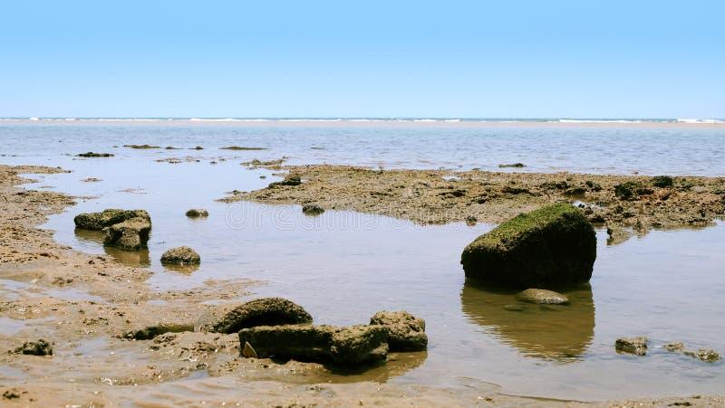 Утес на пляже стоковое фото rf