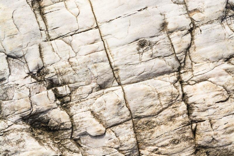 утес Невады текстурирует нас стоковое изображение